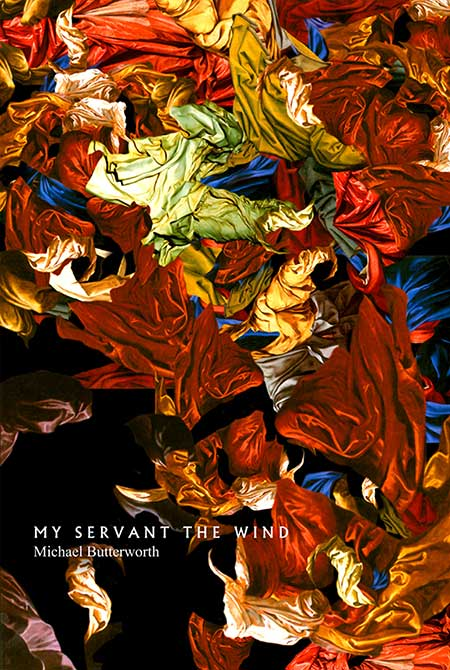 My Servant the Wind